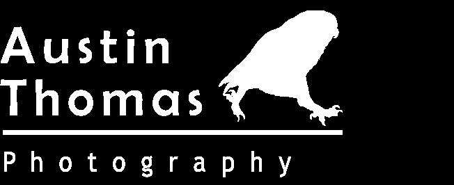 Austin Thomas Photography